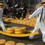 Je zuivelconsumptie verminderen? Haal goede kaasvervangers in huis